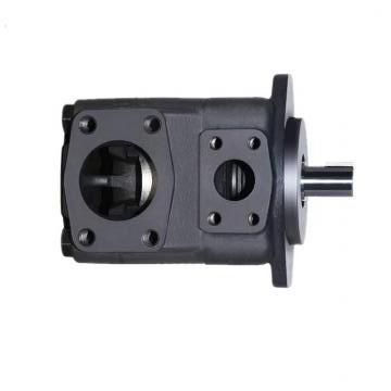 Vickers PV046R1K1T1NMLZ+PVAC1ECMNSJW35 PV 196 pompe à piston