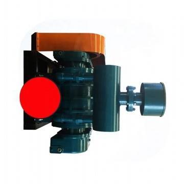 Vickers PV046R1K1KJNMMZ+PV046R1L1T1NMM PV 196 pompe à piston