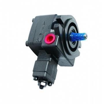 Vickers PV046R1K1T1NMRZ+PVAC1ECMNLJW PV 196 pompe à piston