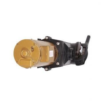Vickers PV046R1K1KJNMRD+PV046R1L1T1NMR PV 196 pompe à piston