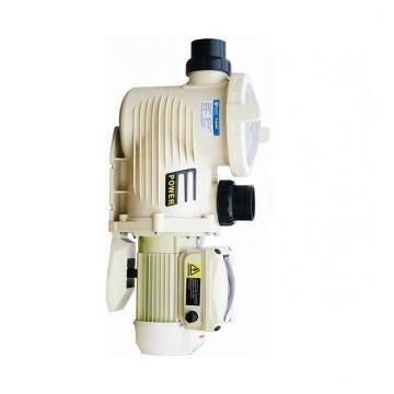 Vickers PV046R1K1T1NMFD4545 PV 196 pompe à piston